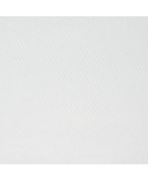 Aliejiniai dažai Master Class, 46 ml / cinko balta (100)