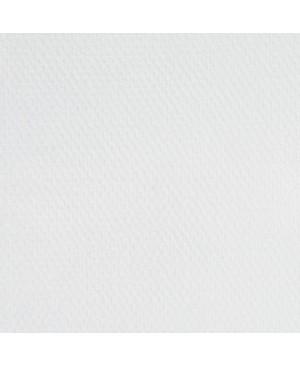 Aliejiniai dažai Master Class, 46 ml / titano balta (101)