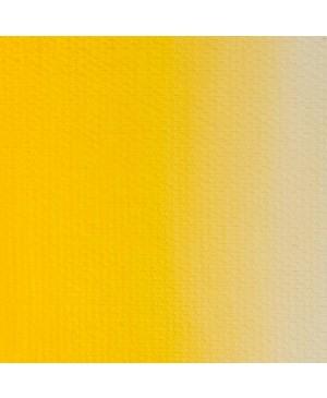 Aliejiniai dažai Master Class, 46 ml / kadmio geltona vidutinė (201)