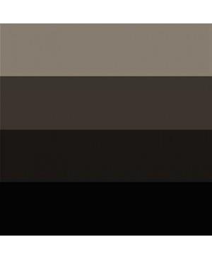 Spaudos dažai Charbonnel Aqua Wash 60ml Black RSR