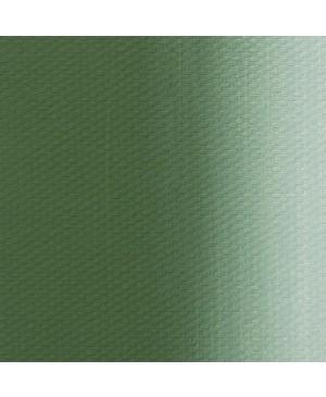 Aliejiniai dažai Master Class, 46 ml / chromo oksidas (704)