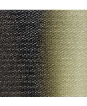 Aliejiniai dažai Master Class, 46 ml / Ararato žalia (715)