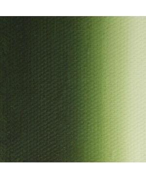 Aliejiniai dažai Master Class, 46 ml / lapų žalia (716)