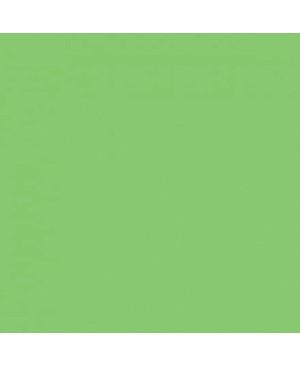Spalvotas popierius A2, 170 g/m², šviesiai žalios sp., 1 lapas