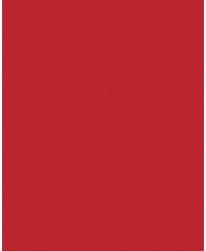 Spalvotas popierius 170 g/m², A4, raudonas, 1 lapas