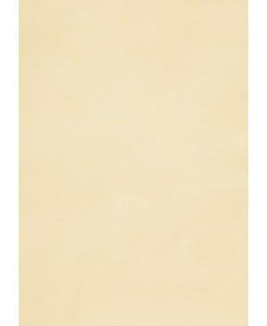Spalvotas permatomas popierius Curious Translucent, Ivory, 100g., A4, 1 lapas