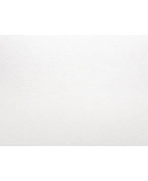 Dekoratyvinis popierius Curious Metallics, Cryogen White, 120 g/m², A4, 1 lapas
