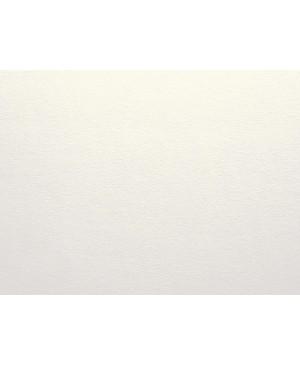 Dekoratyvinis popierius Curious Metallics, White Gold, 120 g/m², 1 lapas