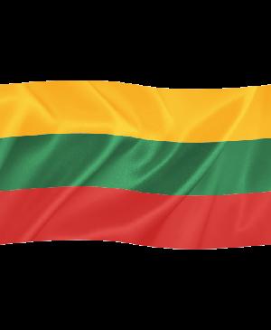 Lietuvos valstybinė vėliava, 1m x 1,70m
