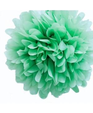 Tissue šilko popierius 30vnt, mėtos žalia 50x70cm (sp 21)