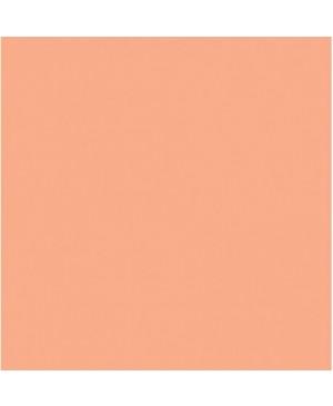 Akrilo dažai Creamy pusiau blizgūs, 60ml, salmon