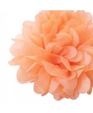 Tissue šilko popierius 30vnt, persikas 50x70cm (sp 13)