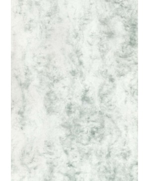 Dekoratyvus popierius W16, A4, 200 g/m², marmurinis žalsvas, 1 vnt.