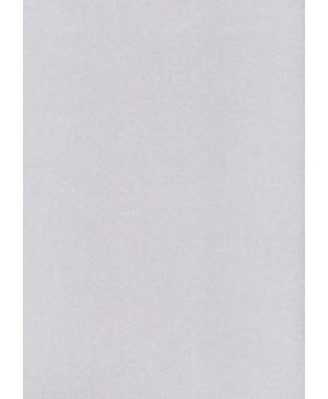 Dekoratyvus popierius W55, A4, 215 g/m², metalo žvilgesio, sidabro sp.,faktūrinis, 1 vnt.