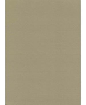 Dekoratyvus popierius W75, A4, 220g.,aukso blizgesio, antikinio aukso sp., faktūrinis, 1 vnt.