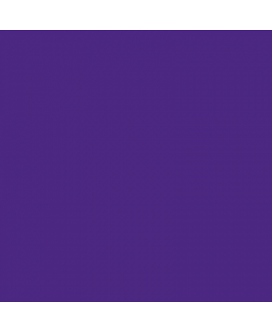 Dažai tekstilei ir batikai EasyColor 25g 251 violet