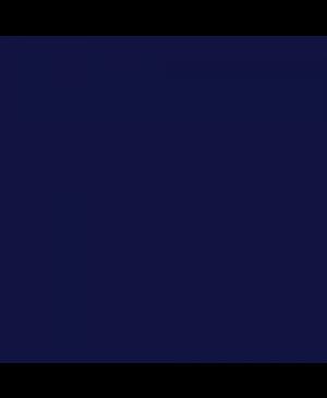 Dažai tekstilei ir batikai Easycolor 25g 053 dark blue