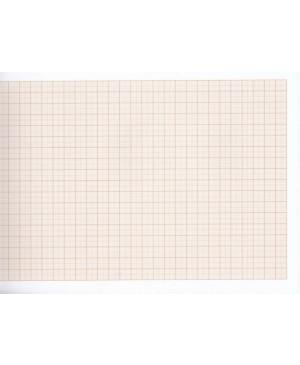 Milimetrinis popierius A2, 1 lapas