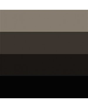 Spaudos dažai Charbonnel Aqua Wash 60ml Black 55985