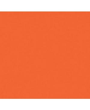 Spalvotas popierius Image Coloraction, A4, 80 g/m² , 500 l., oranžinė sp. (48)