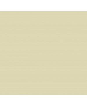 Spalvotas popierius Image Coloraction, A4, 80 g/m² , 500 l., šviesi zomšos sp. (54)