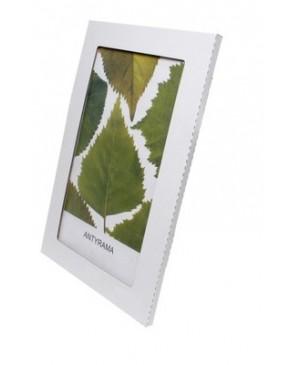 Berėmis organinis stiklas 60x80 cm