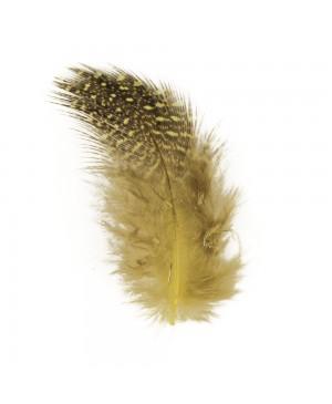Plunksnos dekoratyvios, 6cm, 2g (~40vnt.), geltona/juoda