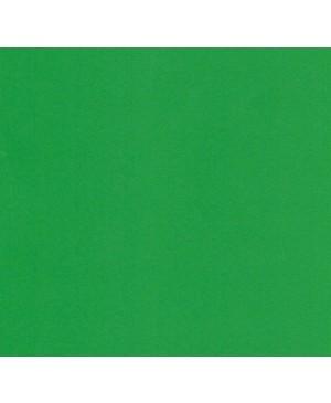 Dažai tekstilei ir batikai EasyColor 25g 067 rich green