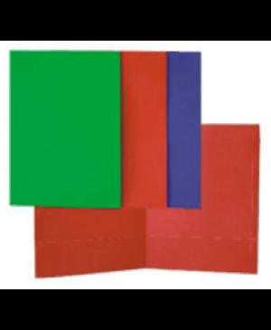 Aplankas kartoninis su 2 kišenėmis A4, 300g, žalias