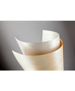 Popierius Dune, A4, 230 g/m², kreminės sp., faktūrinis, 1 vnt.