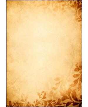 Diplominis popierius Gintaras (Amber),  A4, 170 g/m², 1 lapas