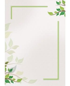 Diplominis popierius Green, A4, 170 g/m² , 1 lapas
