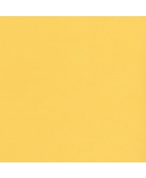 Faktūrinis skrebinimo popierius Light Canary, 216 g/m², 30.5x30.5cm, 1 vnt.