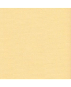 "Faktūrinis skrebinimo popierius ""Corn"", 216g/m2, 30.5x30.5cm, 1 vnt."
